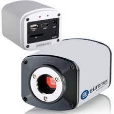 microscope-ESC33262